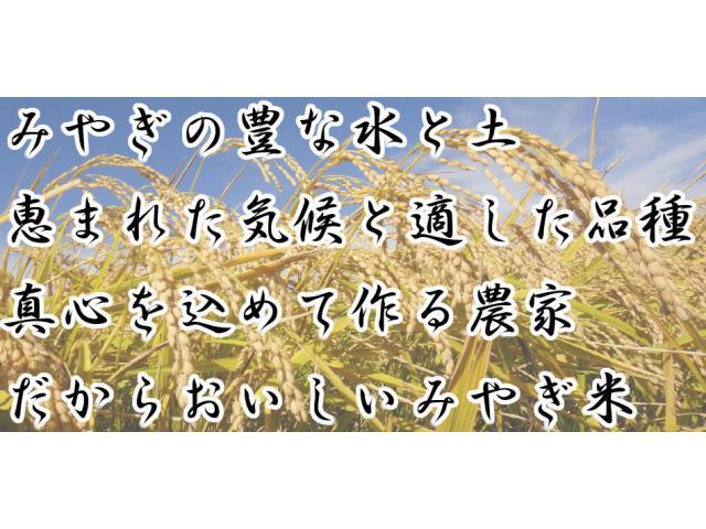 武田農園が作った【みやぎの環境保全米】を送料・精米無料でお届けします。